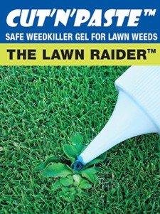 Lawn Raider Cut'n'Paste